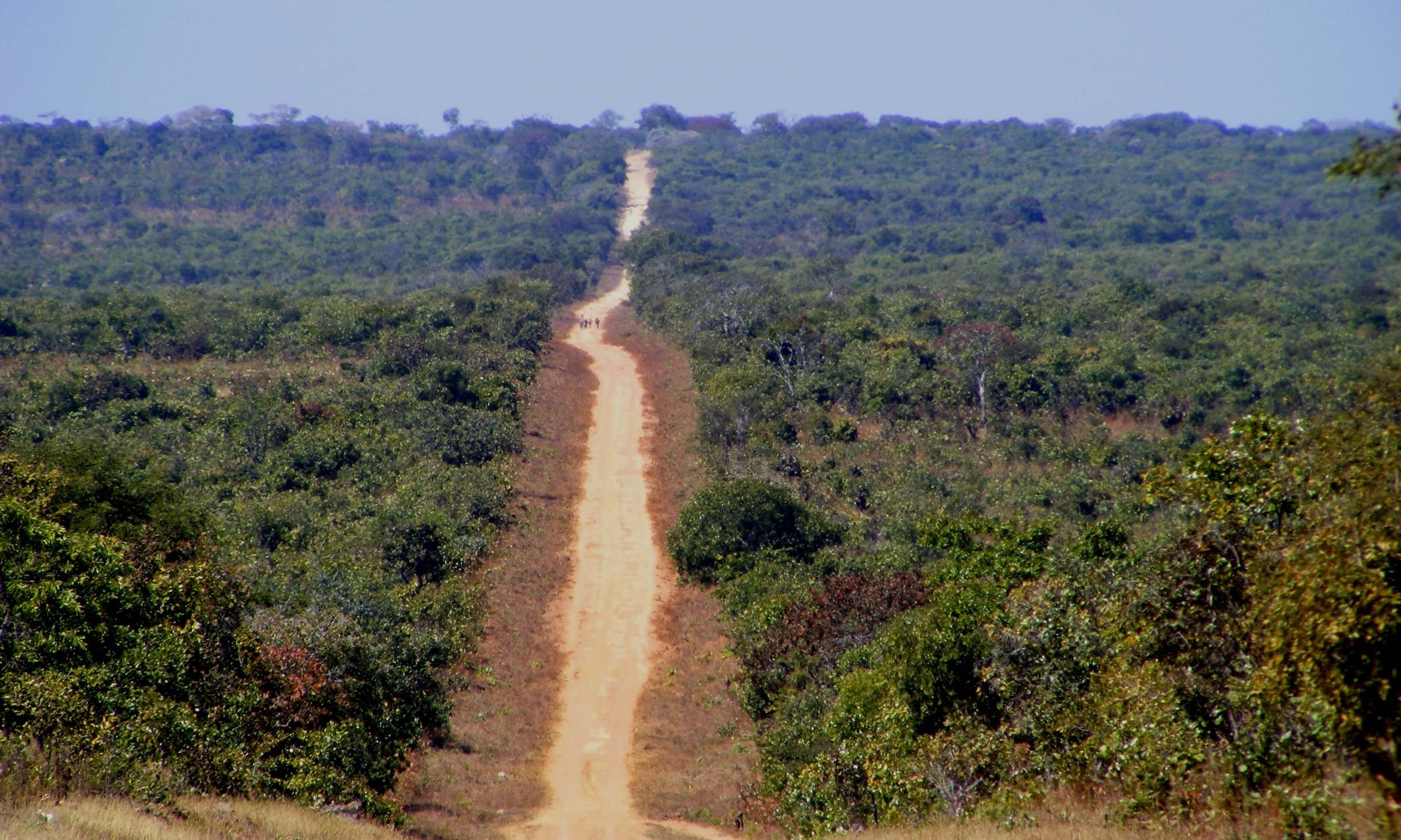 Zambia, endless road