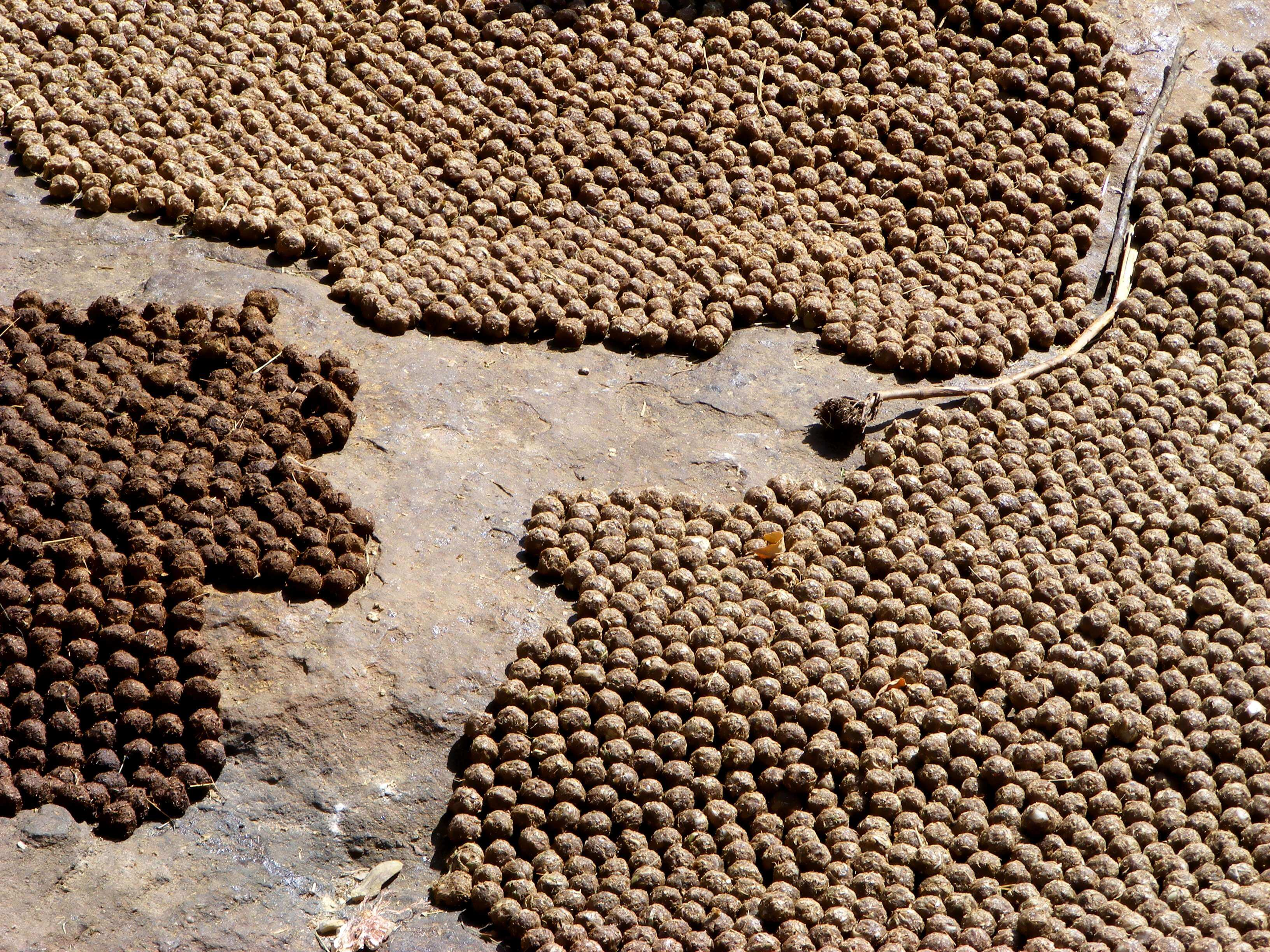 Mali, Dogon, onion balls, spices,