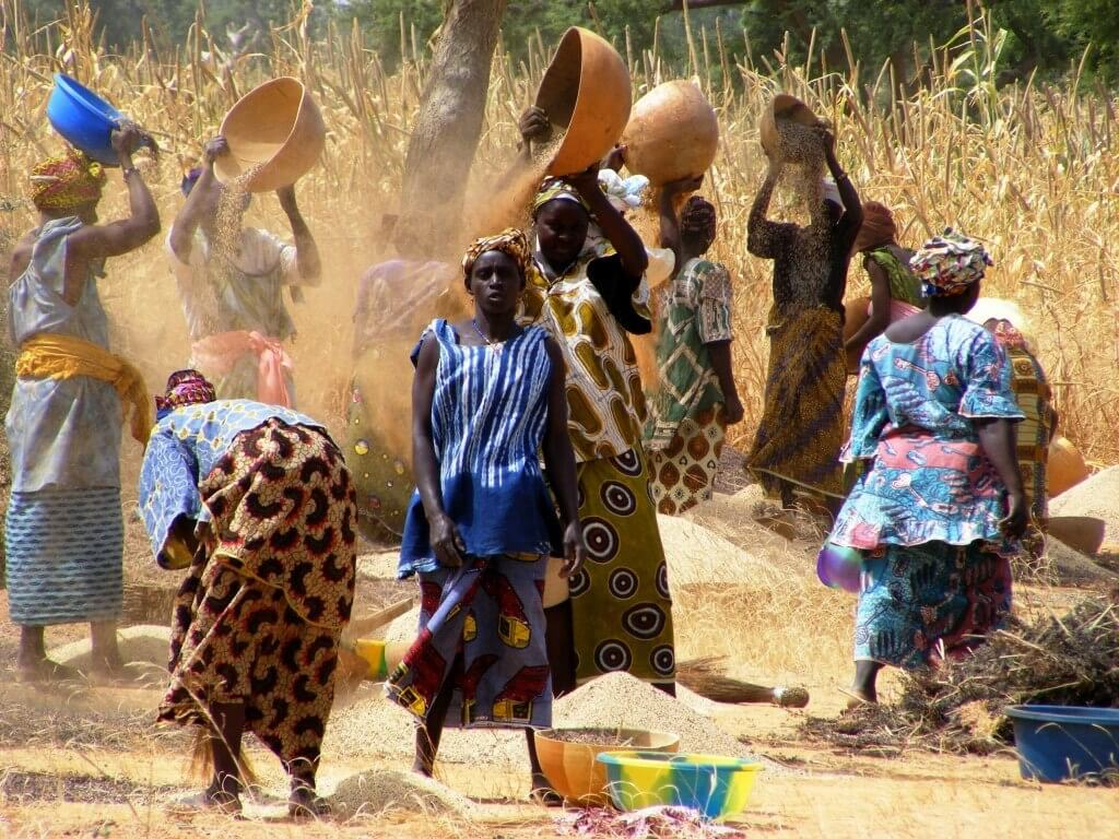 Mali, Women, Agriculture, grains, Colorful Dress